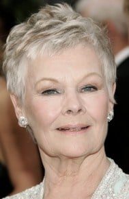 Judi Dench Pixie Instructions | Short Hairstyle 2013