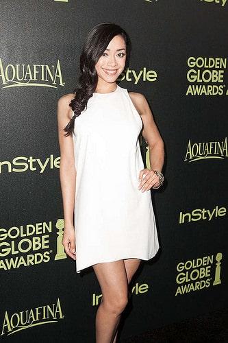 2015 Golden Globe photo